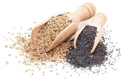 semente-de-Gergelim