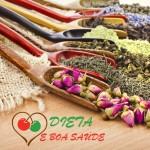 Plantas Medicinais Para Diabetes, as 4 Melhores