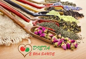 plantas medicinais para diabetes