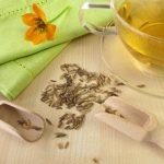 Chá de Erva Doce, Benefícios  e Como Fazer.