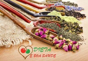 Plantas Medicinais e Suas Utilidades na Saúde