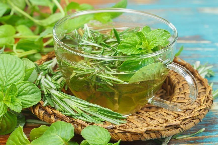 plantas medicinais alecrim