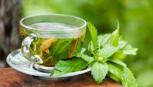 Como Fazer Chá de Hortelã