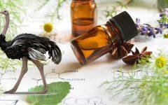 Óleo de Avestruz | Para Que Serve e Benefícios