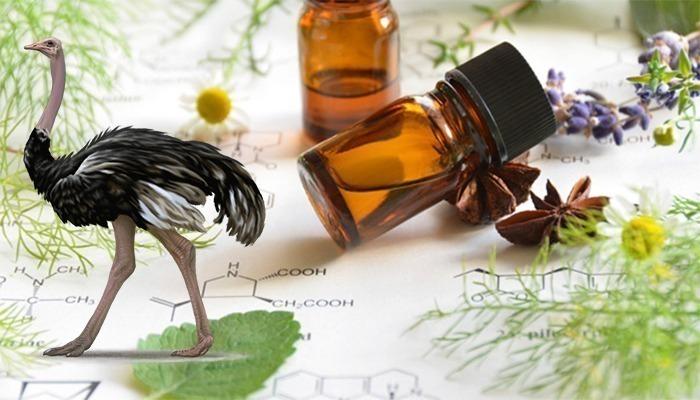 oleo de avestruz