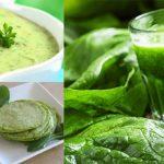 Receitas Com Espinafre e Seus Benefícios Para Saúde