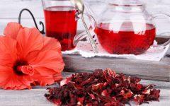 Hibisco | Benefícios do Chá e Cuidados Importantes