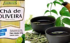 Chá de Oliveira Benefícios e Malefícios, Para Que Serve?