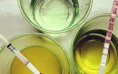 Teste de Gravidez Caseiro Com Vinagre Como Fazer?
