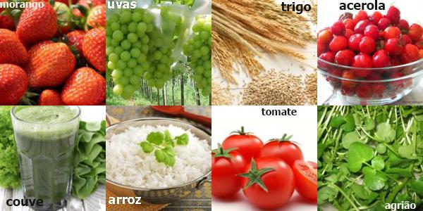 alimentos antioxidante
