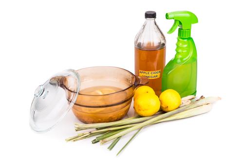 como fazer repelente de citronela
