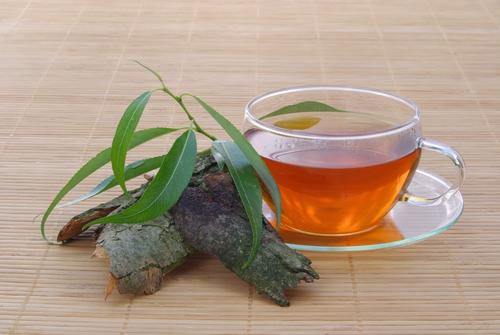 chá da casca de jatobá