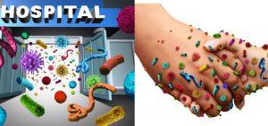 infeccao hospitalar bacteria