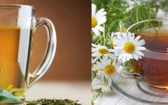 Chá de Sabugueiro Para Que Serve e Indicações.