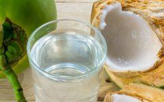Água de Coco: Propriedades, Benefícios e Dicas