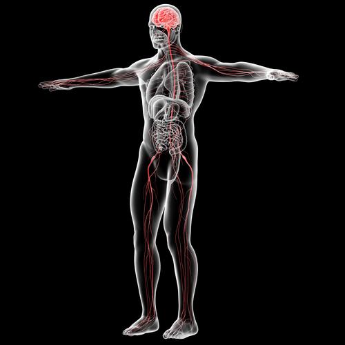 como aliviar a dor do nervo ciático inflamado