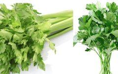Os Benefícios e Como Consumir o Salsão.