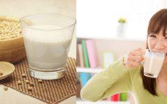 Benefícios e Cuidados no Uso do Leite de Soja.