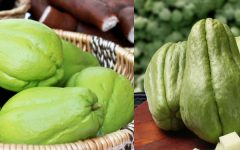 Propriedades e Benefícios do Chuchu para a Saúde