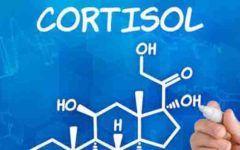 Cortisol: quais os seus malefícios e como reduzir os níveis