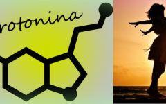 Serotonina: Função, e como melhorar no seu dia a dia.