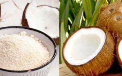 Benefícios da farinha de coco:  para que serve, como fazer, emagrece?
