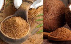 Açúcar de Coco: Propriedades e Diferenças Entre Mascavo e Refinado