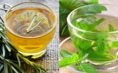 Chá De Alecrim Com Hortelã: Usos, Benefícios E Como Fazer.