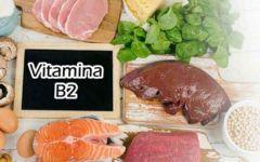 Vitamina B2: Tudo sobre a Riboflavina!