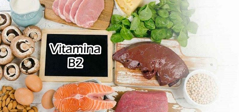 alimentos fonte de vitamina b2