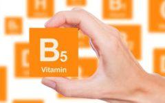 Vitamina b5: para que serve, onde encontrar nos alimentos