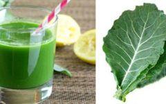 Suco de couve com limão, benefícios e receitas