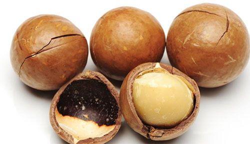 Macadamia Origem