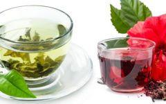 Chá verde com hibisco: para que serve? Conheça os benefícios!