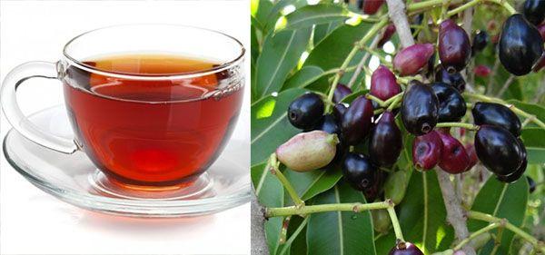 Como fazer chá de Jambolão