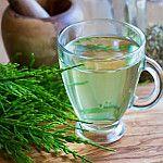 Chá de cavalinha para emagrecer