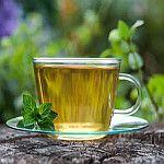 Chá de hortelã para emagrecer