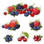 frutas-vermelhas-lista