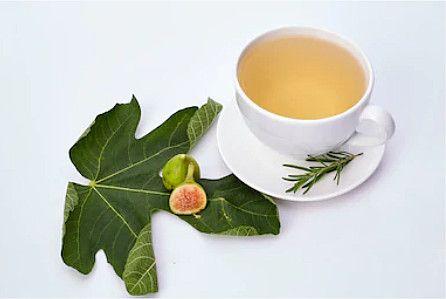 cha de folha de figo