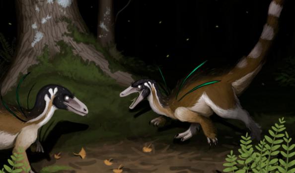 Dinossauro achado no Brasil possui visual chamativo semelhante a um pavão